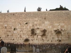 western wall-1